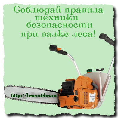 техники безопасности вальщик леса